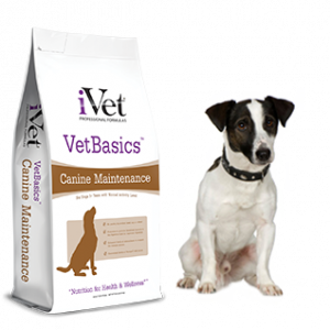Dog Food - iVet